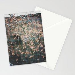 linz 16 Stationery Cards