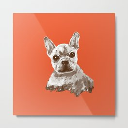 Frenchie, Red Metal Print