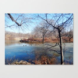 Winter in Central Park, NYC Canvas Print