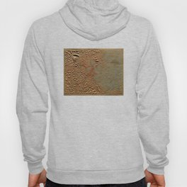Vintage Relief Map of Boston MA (1874) Hoody