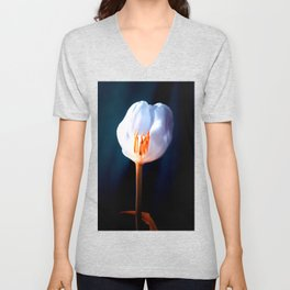 The Inner Light Unisex V-Neck