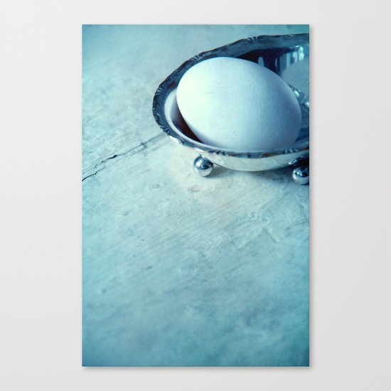 white egg Canvas Print