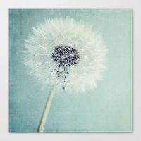 dandelion Canvas Prints featuring Dandelion  by Juste Pixx Photography