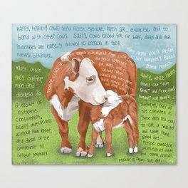 Cows 2-Hereford Canvas Print