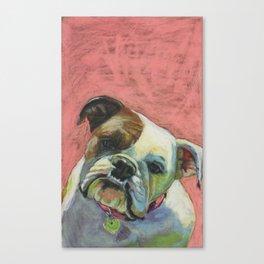 Bulldog! Canvas Print