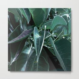Botanical night dream Metal Print