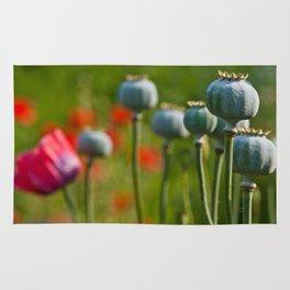 Poppy Heads Rug