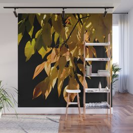 Canadian white ash Wall Mural
