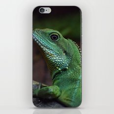 Lizzard iPhone & iPod Skin
