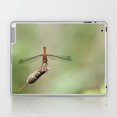 Autumn Meadowhawk Dragonfly Laptop & iPad Skin