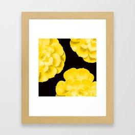 Large Yellow Succulent On Black Background #decor #society6 #buyart Framed Art Print