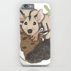 Sugar Glider - Australian Native Animals iPhone 6s Slim Case
