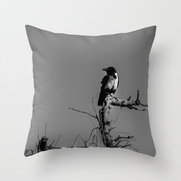Pied Crow Perched Throw Pillow