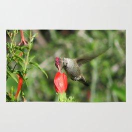 Hummingbird and The Flower Rug