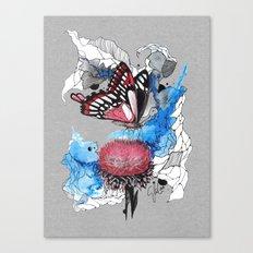 Butterfly I by carographic, Carolyn Mielke Canvas Print