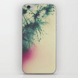 dandelion VI iPhone Skin