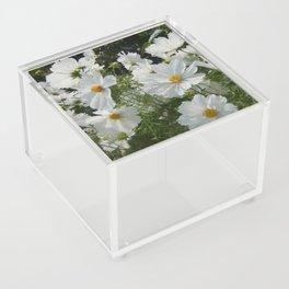 Artful Daisies Acrylic Box