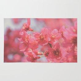 Plum Blossom 4 Rug