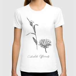Calendula Botanical Illustration T-shirt