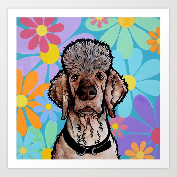 Parti Poodle Art Print by robiniart