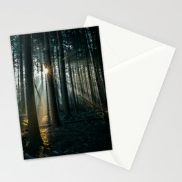 The morningsun shining through the trees | Netherlands | nature-photography | fine natural art-print Stationery Cards