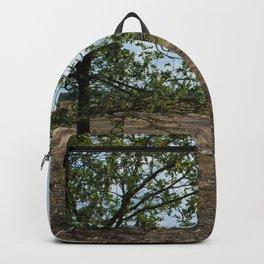 Tree View Veluwe Netherlands Backpack
