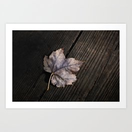 the lifelines of fall Art Print