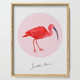 Scarlet Ibis Serving Tray