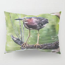 Green Heron in the channel Pillow Sham