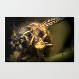 The Workaholic  Canvas Print