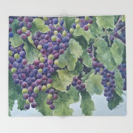 Napa Sherpa Fleece Blanket Sonoma Throw Blanket Folk Art Americana Tuscan Art California Wine Country Grape Vineyard Plush Fleece Blanket