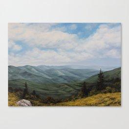 Roan Mountain Canvas Print