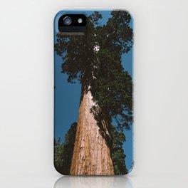 Sequoia National Park VII iPhone Case
