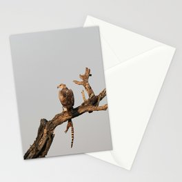 Hawk Eagle with its Catch Stationery Cards