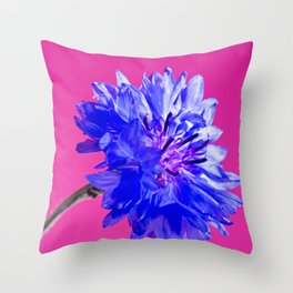 Blue fresh cornflower on the pink background Throw Pillow
