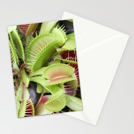 Venus Fly Trap Stationery Cards