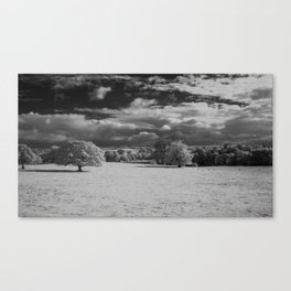 A different view. Canvas Print