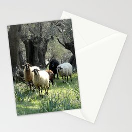 Five-Fold Stationery Cards