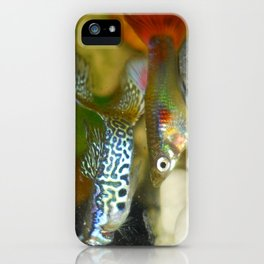 Young males guppies iPhone Case