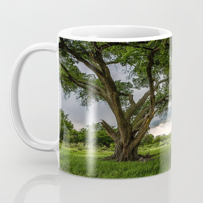 Big Tree - Tall Cottonwood and Passing Storm in Texas Coffee Mug