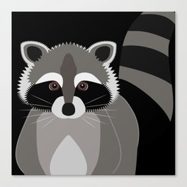 Raccoon in the Night Canvas Print