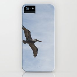 Brown Pelican - Naples, Florida iPhone Case