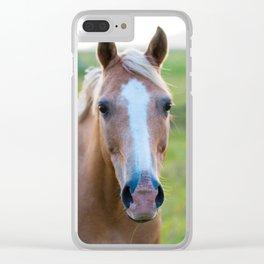Silver II Clear iPhone Case
