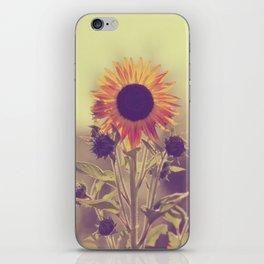 Sunflower 01 iPhone Skin