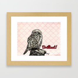 Brilliant Owl- Sassy Bird Framed Art Print
