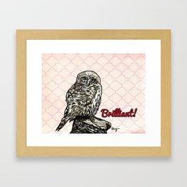 Brilliant Owl- Sassy Bird Framed Art Print