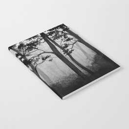 Into the Woods Notebook