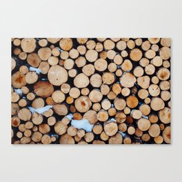 Chopped wood ready to heat the homestead Canvas Print