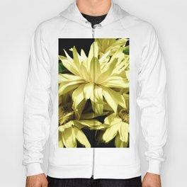 Yellow Chrysanthemum  Aster Flowers Hoody