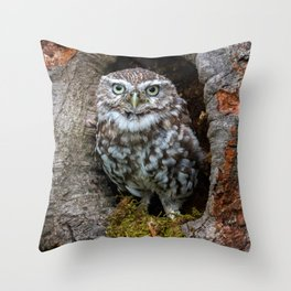 Owl in a tree hole Throw Pillow